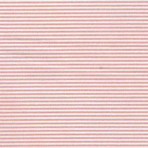 rosa righe 1